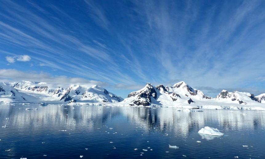 Картинки по запросу Каталог продукции для Арктики